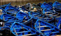 blue fishing boats and sailors in port of Essaouira Morocco formerly Mogador