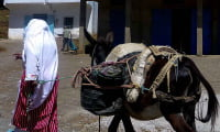 Berber women traditional dress fouta leading donkey in Morocco