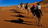 Discover Morocco camel trek with Berber nomad camel guide Sahara Desert southern Morocco