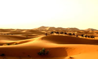 private camel trek in Sahara Desert Morocco