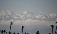 Snow-capped High Atlas Mountains with palm trees foreground near Marrakech Morocco