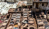 curing and dyeing hides for leather products tanneries in Fes Morocco former imperial city