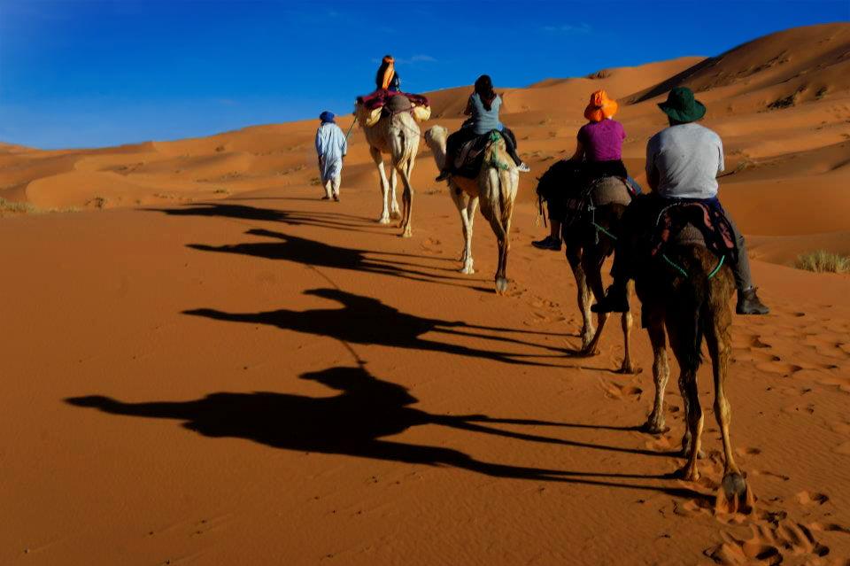 Image result for private morocco tours