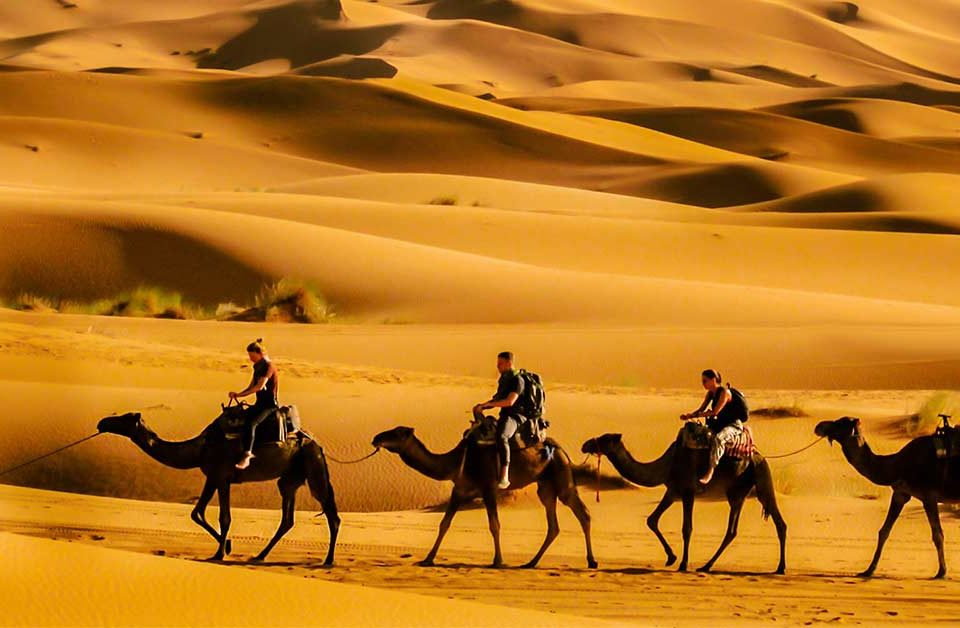Top 7 Best Places to Ride a Camel in Morocco